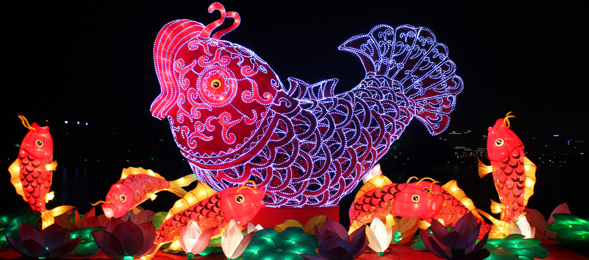 """""""金蛇狂舞·幸福惠城""""2013惠州西湖花灯博览会图片"""